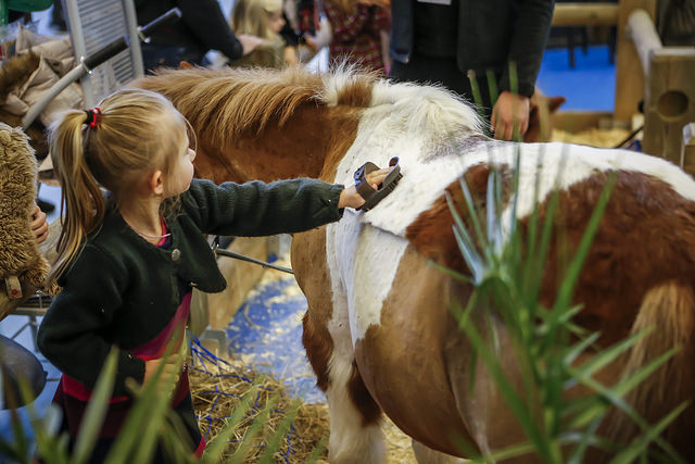 salon-du-cheval_village-enfants-poneys12
