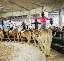 salon-du-cheval_village-enfants-poneys11