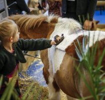 salon-du-cheval_village-enfants-poneys12