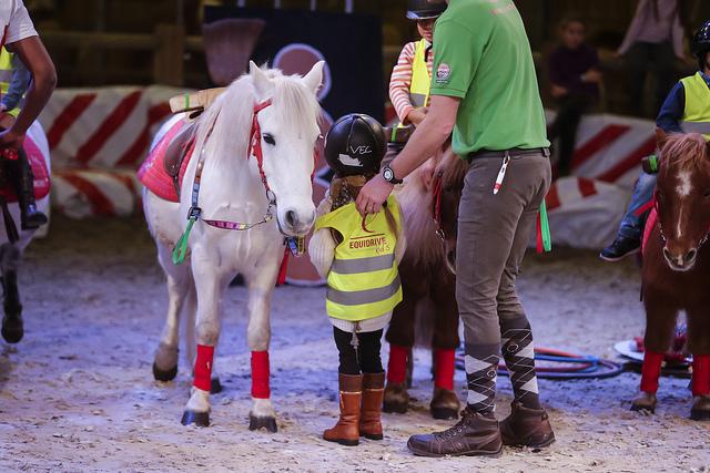 SALON-DU-CHEVAL_village-enfants-poneys5