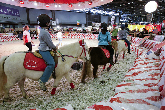 SALON-DU-CHEVAL_village-enfants-poneys9