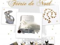 feerie_de_noel