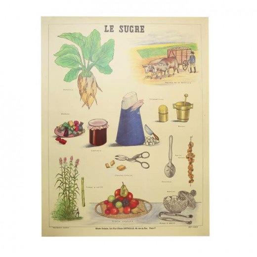 LE_PRINCE_JARDINIER_planche_Sugar_LFG