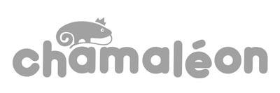 CHAMALEON_Logo_gris