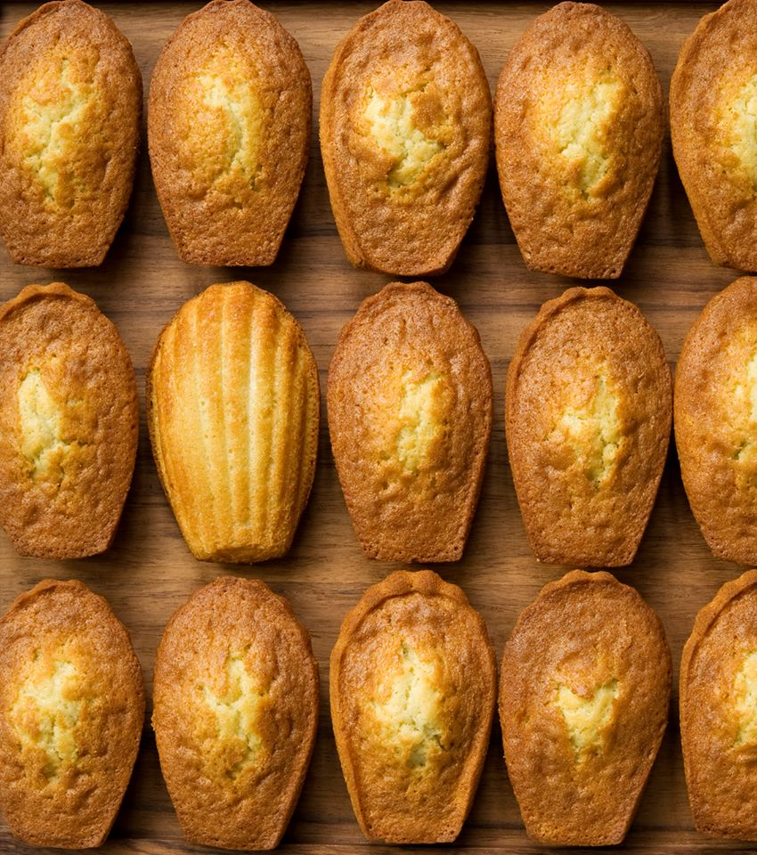 PDR_NuitRose_Madeleines_oct2014