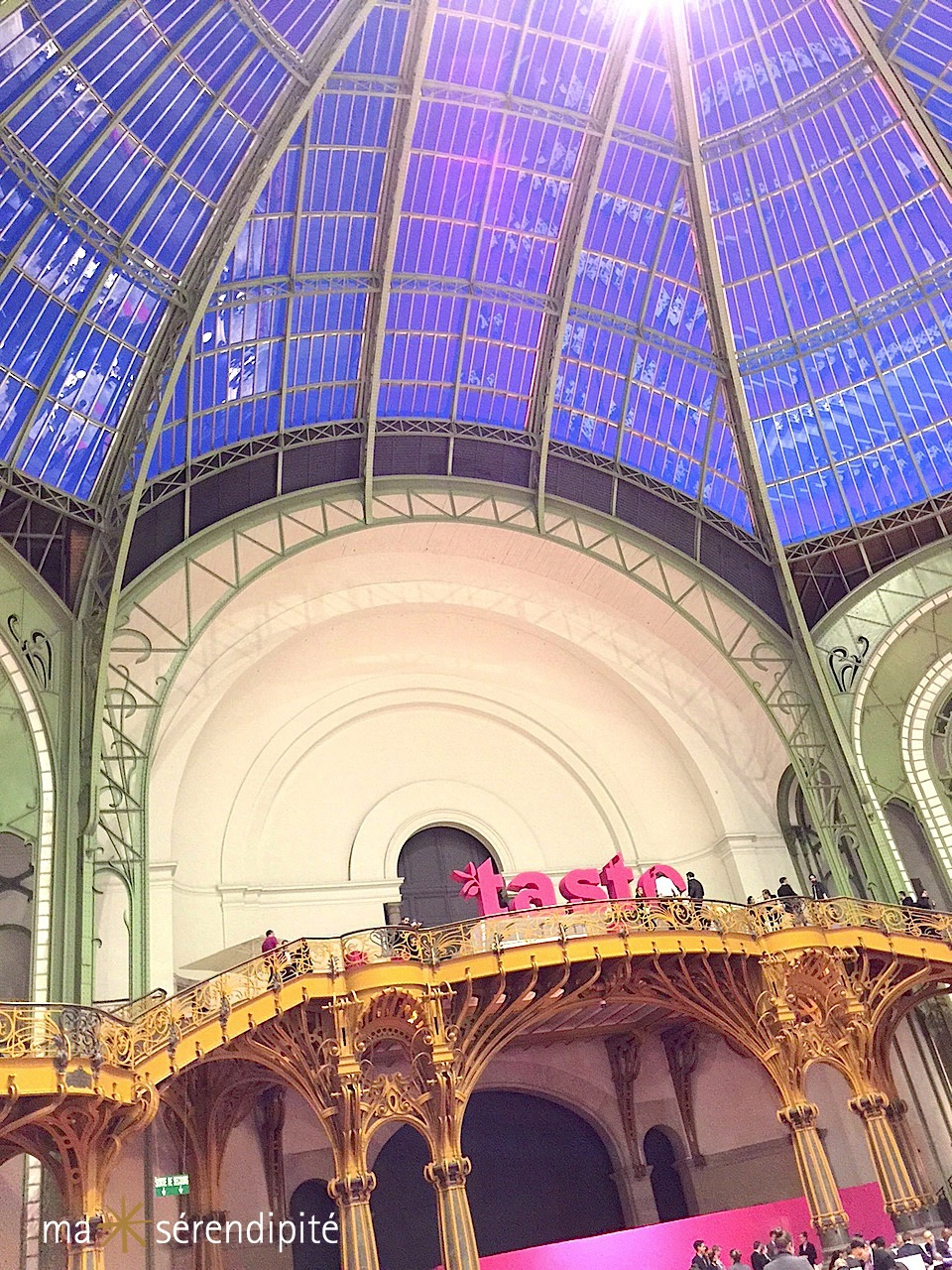 TASTE-OF-PARIS-2015_Grand-Palais-Nef-Hospitality2_MS