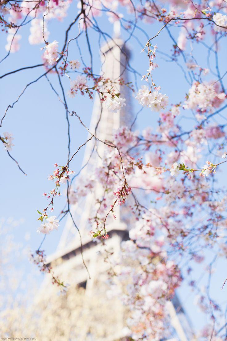 Paris-Tour-Eiffel-spring