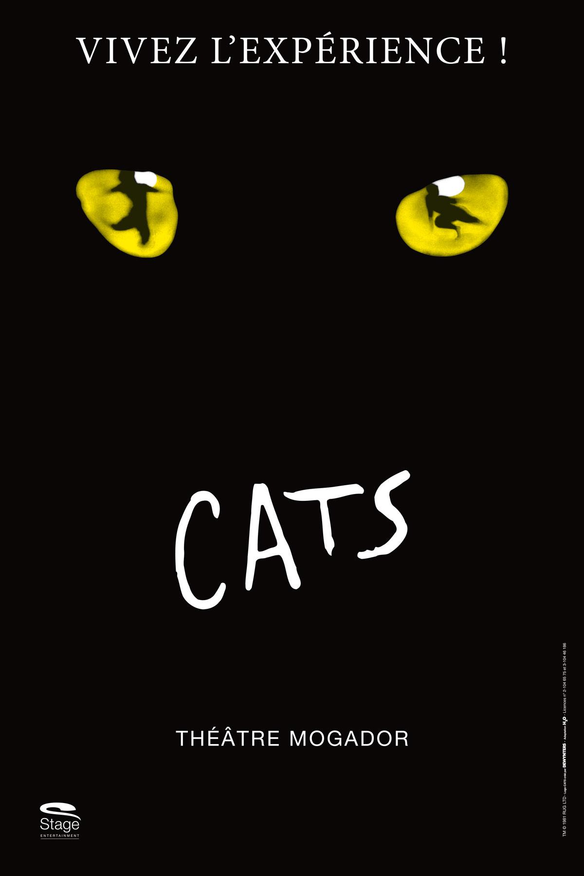Cats_40x60_BD