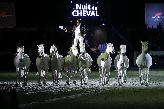 actualit paris salon du cheval de paris 2015 show On salon du cheval tarif